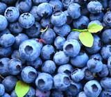 Šaldytos mėlynės. 1,80 Eur/kg